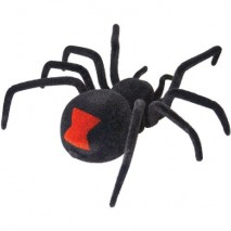 Radio Controlled Black Widow