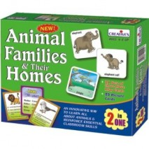 Animal Families and Their Homes